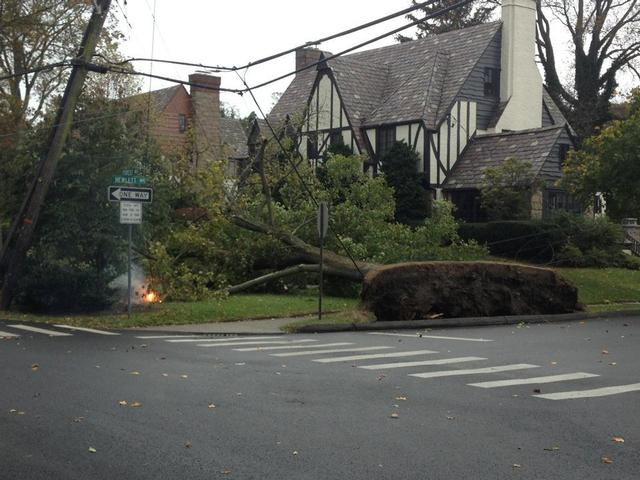 Forest Ave x Hewlett St.  Tree down and wires down.  First call of the storm for the FD